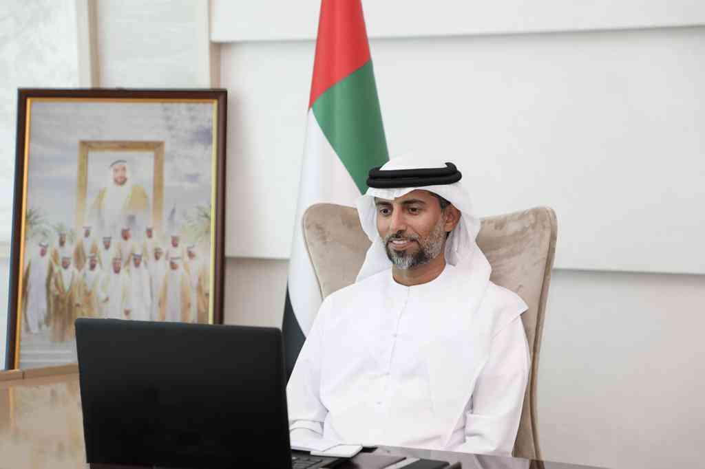 الإمارات تدعو لتحقيق الربط الكهربائي الكامل بين الدول العربية