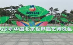 افتتاح جناح الإمارات في إكسبو 2019 بكين