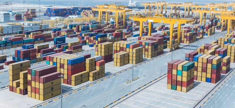 The logistics sector is the import safety valve for the UAE and the region
