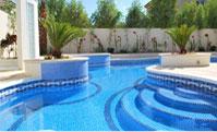 Skimmer Type Pool